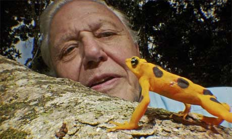 DavidAttenborough460